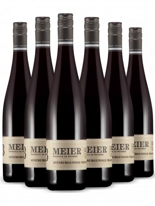 Riesling Qualitätswein trocken - Meier -