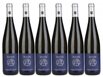 6 Flaschen Deidesheimer Kieselberg Riesling QbA trocken
