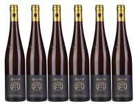 6 Flaschen Forster Ungeheuer Riesling QbA trocken GG
