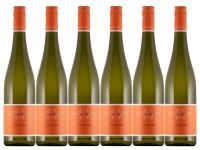 6 Flaschen Chardonnay Trocken - Weingut Klundt -