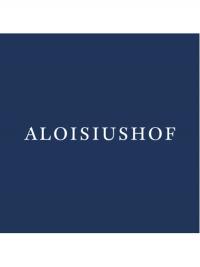 Riesling trocken  - Aloisiushof -
