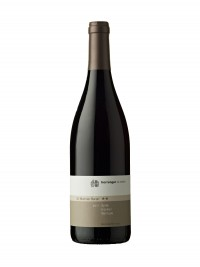 Herrengut St. Martiner Baron Syrah Barrique trocken