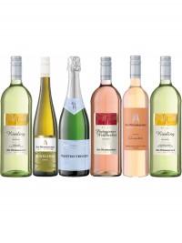 Trockenes aus Niederkirchen - Die Weinmacher