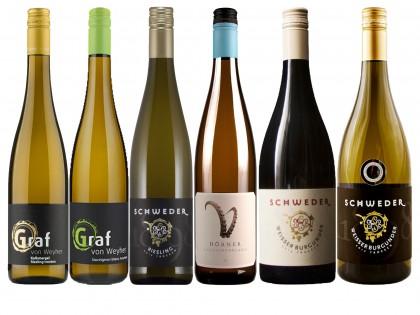 Produktlistung auf Pfalzweinshop.de