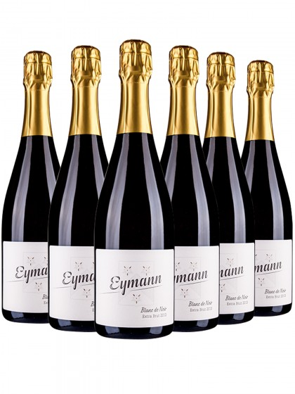 6 Flaschen Riesling extra brut - Eymann