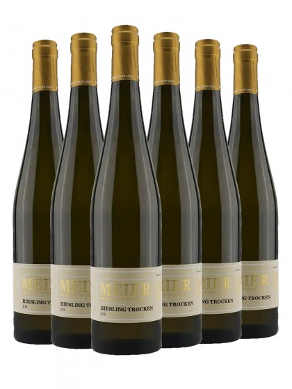 6 Flaschen Ziegler Meier Riesling 2G trocken
