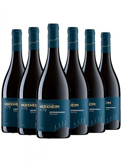 6 Flaschen Herxheimer Honigsack Spätburgunder Rotwein trocken